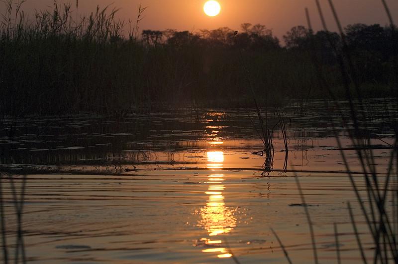 SUnset_on_Okavango