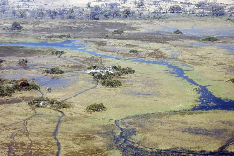 Okavango_Delta4