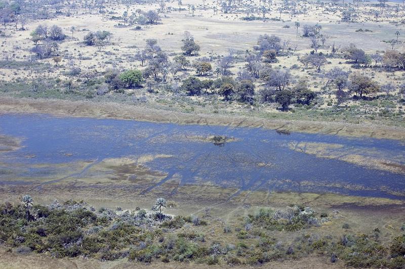 Okavango_Delta5
