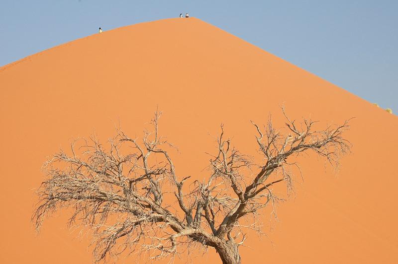 Dune45-3