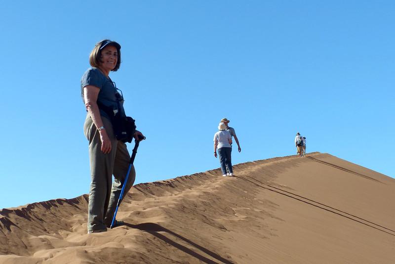 137 Sossusvlei Sand Dunes