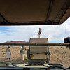 Searching for Rhinos, Damaraland
