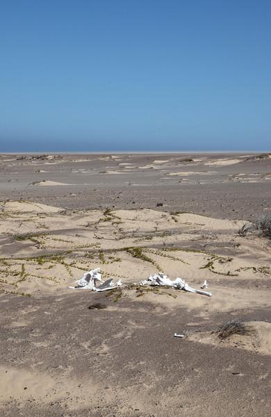 Skeleton Coast scenery