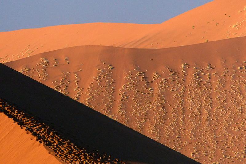 115 Sossusvlei Sand Dunes