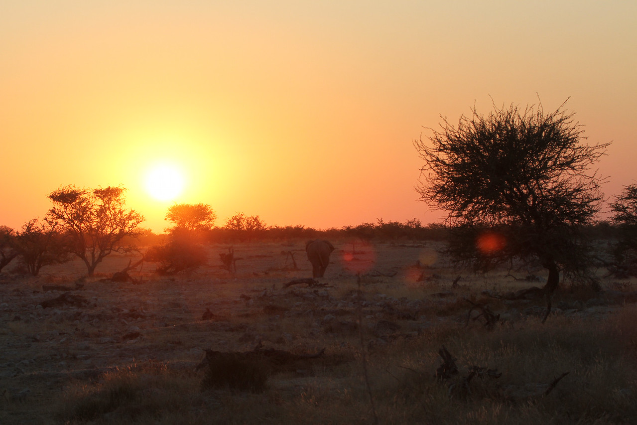Bye Namibia - it was fantastic
