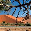 127 Sossusvlei Sand Dunes