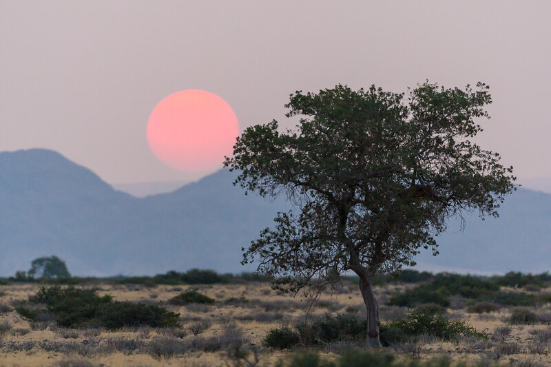 Sunset in Namib-Naukluft NP, Namibia.