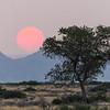 Sunset in Namib-Naukluft NP, Namibia.