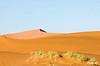 sand_dunes_5