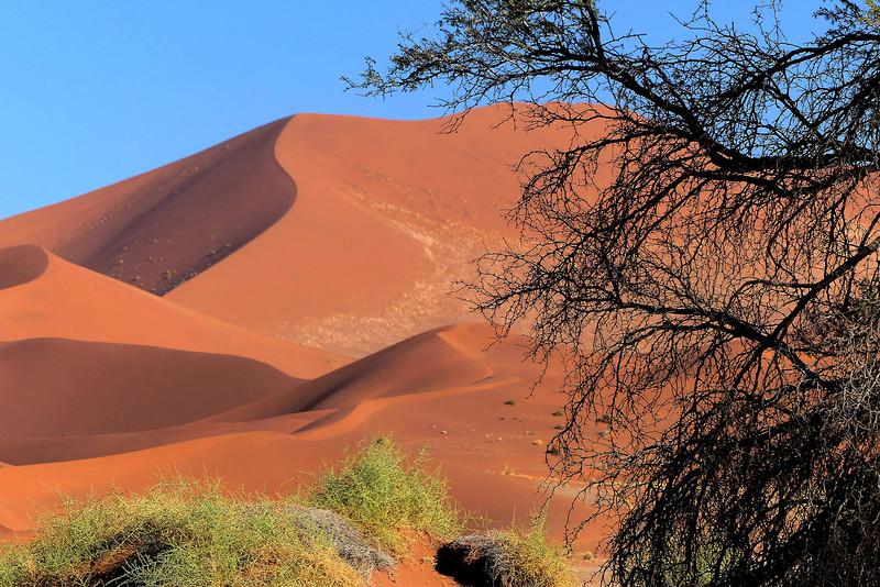 128 Sossusvlei Sand Dunes