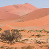 Tourists climb the dunes at Sossusvlei, Namib-Nauklift NP, Namibia.