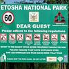 537 Etosha National Park, Namibia