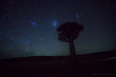 Fuzzier than I'd like, but those are the Magellanic Clouds