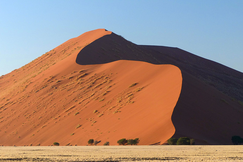 107 Sossusvlei Sand Dunes