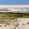 Salt Pan, Etosha National Park