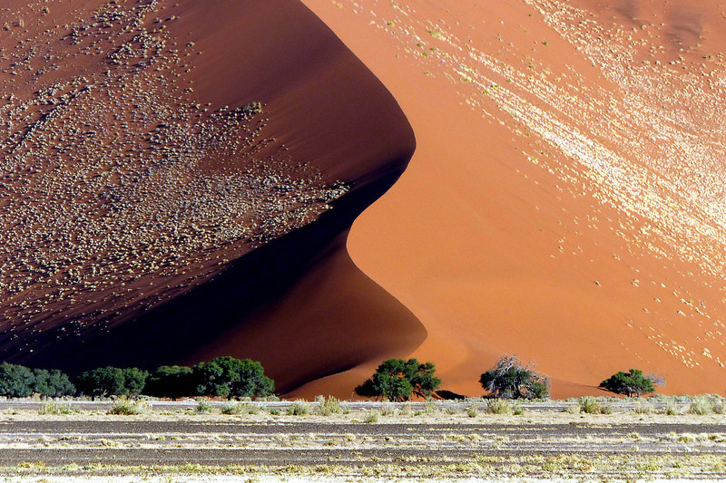 119 Sossusvlei Sand Dunes