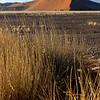 106 Sossusvlei Sand Dunes