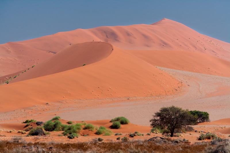 Tourists climb the dunes at Sossusvlei, Namib-Nauklift NP, Namibia.