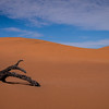 The red desert