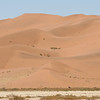 The dunes at and around Sossusvlei with a solitary Gemsbok in the distant heat haze