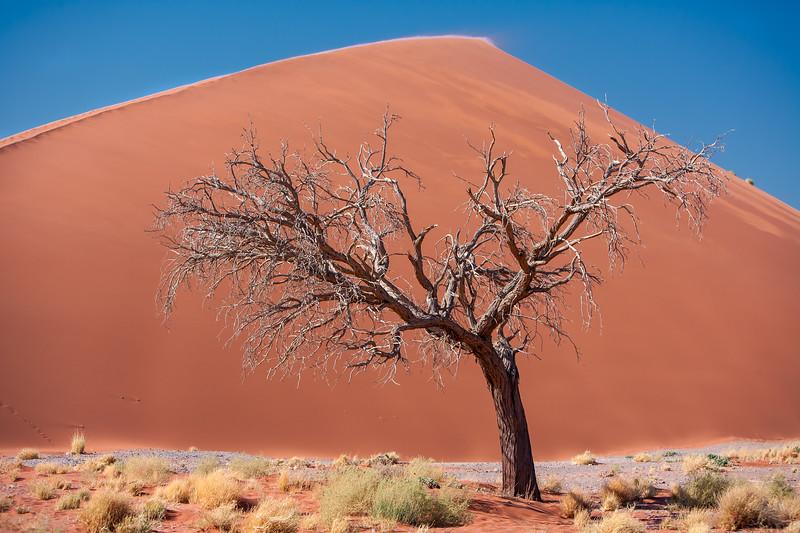 Namibia07-0178