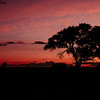 Sunset at Etosha NP