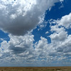 578 Etosha National Park