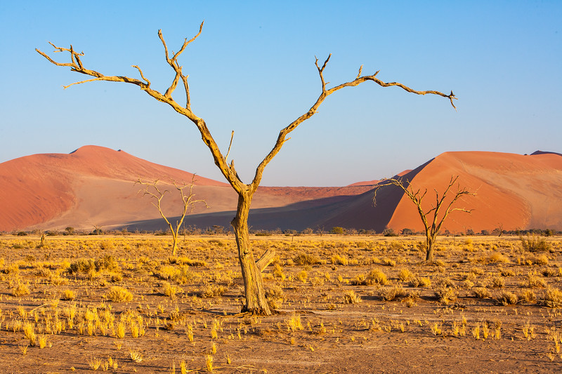Namibia07-0067