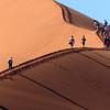 133 Sossusvlei Sand Dunes