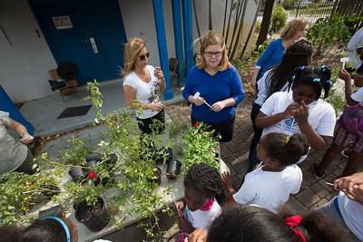 Nan Knox Garden Class with Jesse Durko Garden Club of Fort Lauderdale