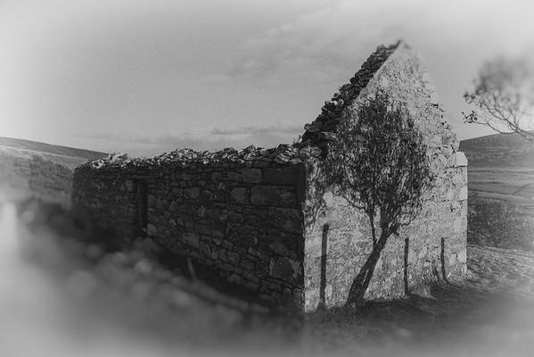 shadow of ruin