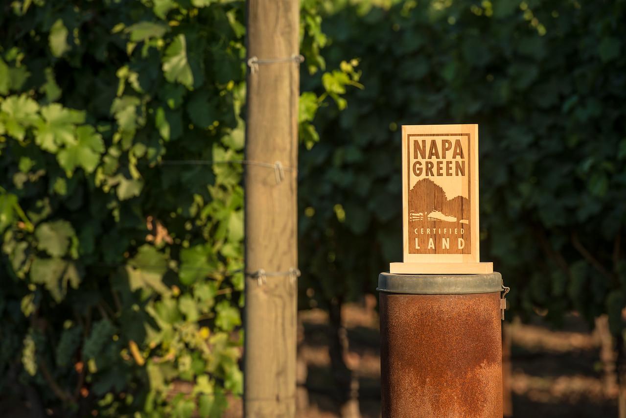 Napa Green Sign and Vineyard