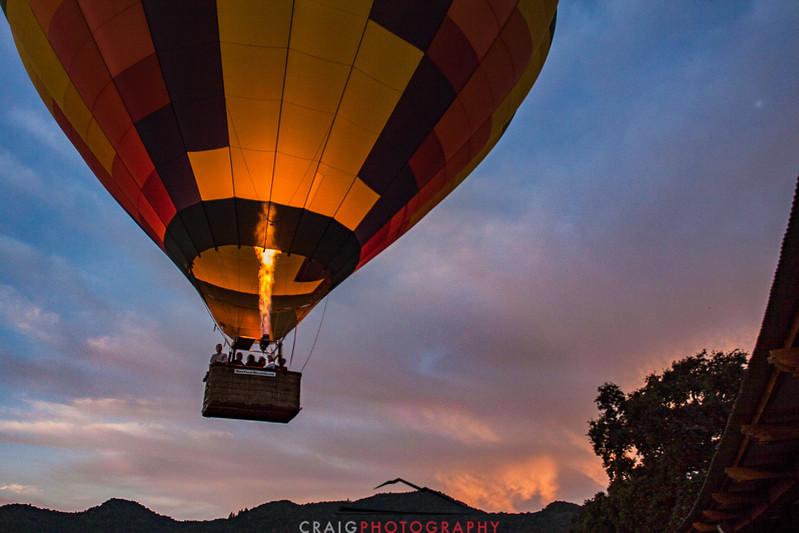 Balloons over Napa Valley #9