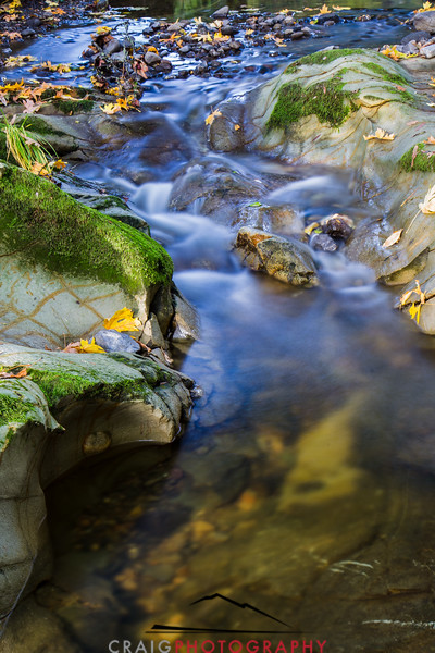 Fall color Fall streams Napa California 3