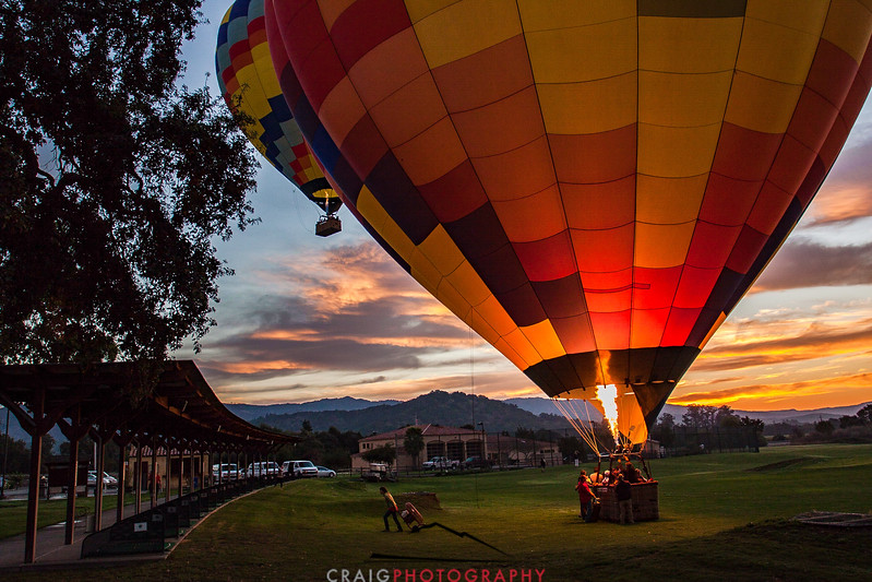 Balloons over Napa Valley #8