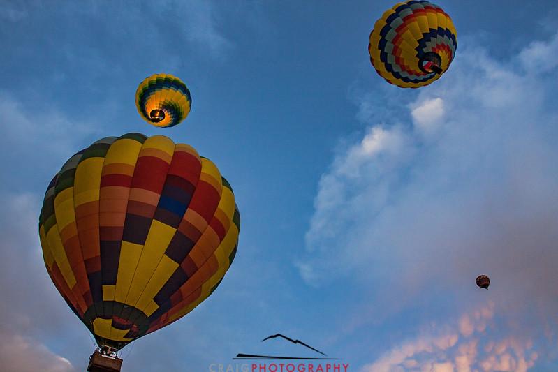 Balloon flight over Napa Valley #10