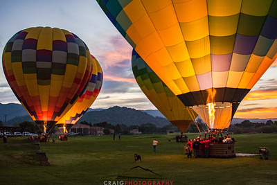 Balloons over Napa Valley #6