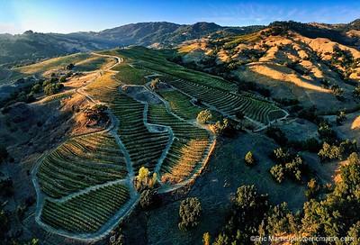 CALIFORNIE. NAPA VALLEY & SONOMA. VERITE WINERY DANS L ALEXANDER MOUNTAIN ESTATE DU CONTE DE SONOMA.