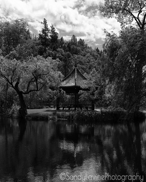 Chateau Montelena Pagoda