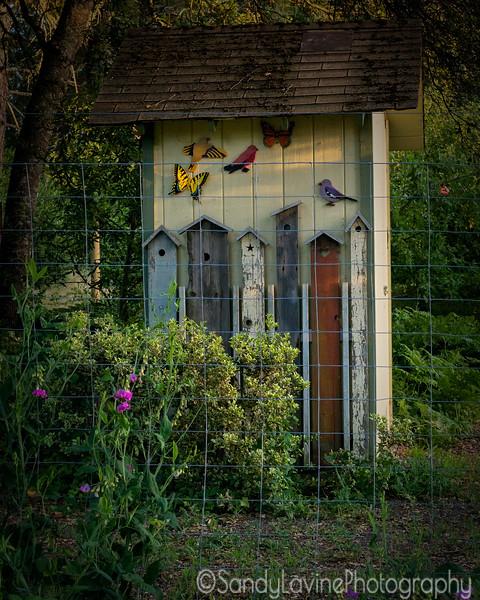 Brookside Birdhouse