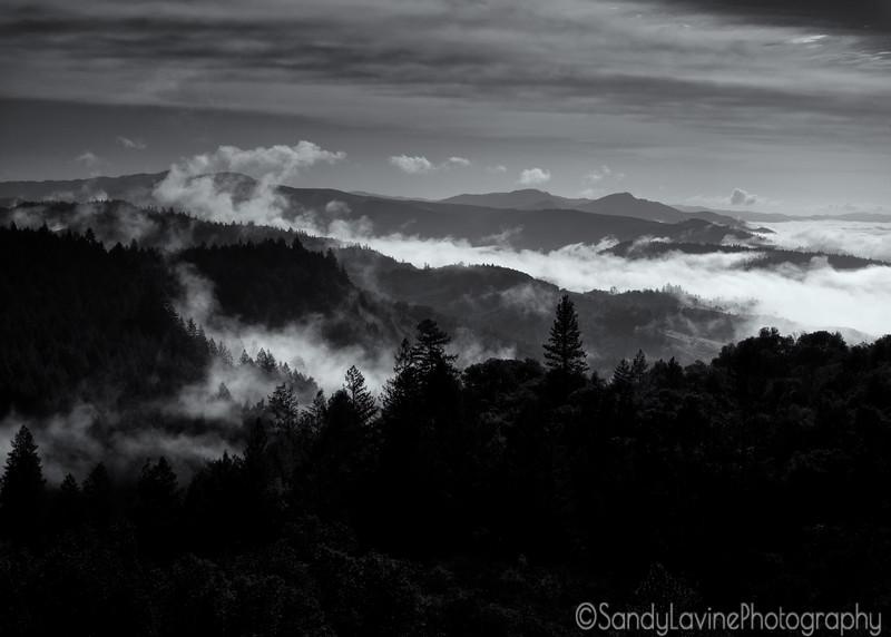 Fog Over Conn Valley