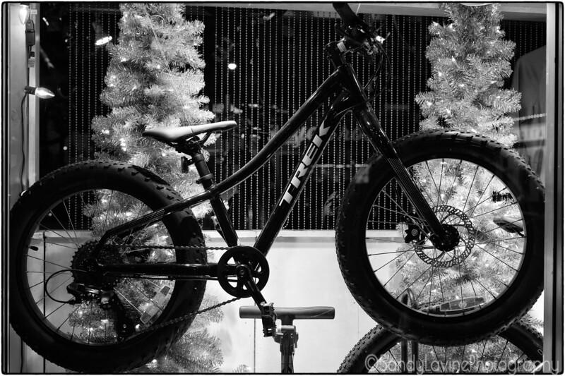Christmas Bicycle