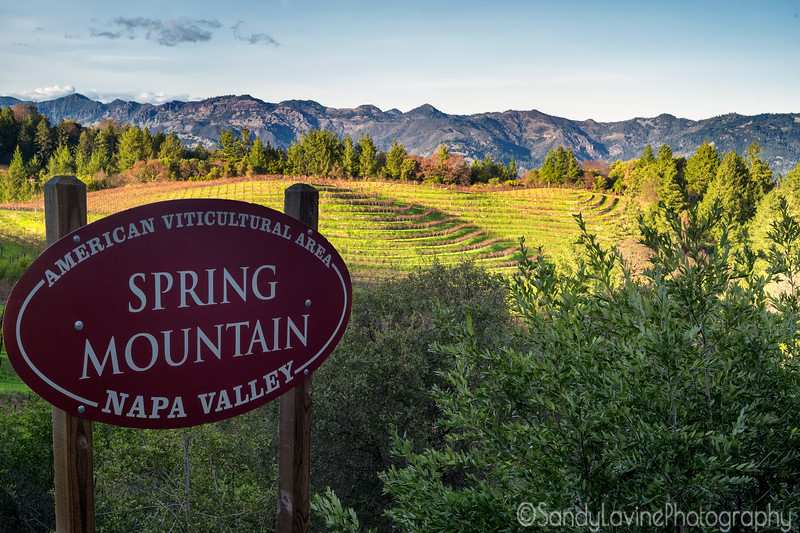Spring Mountain View