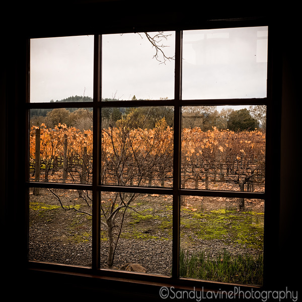 Clos Pegase Window