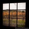 Clos Pegase Window