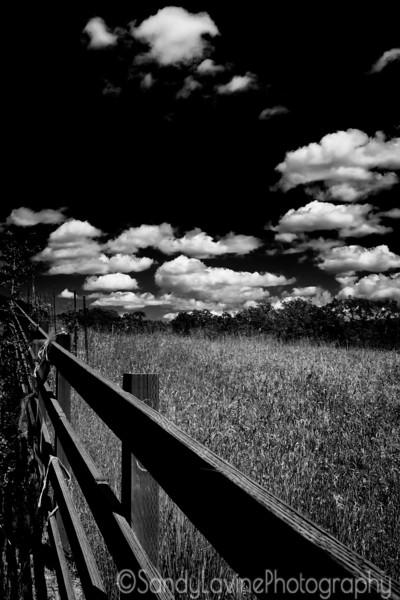 Seavey Fence