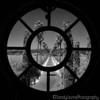 Round Pond Window 2016