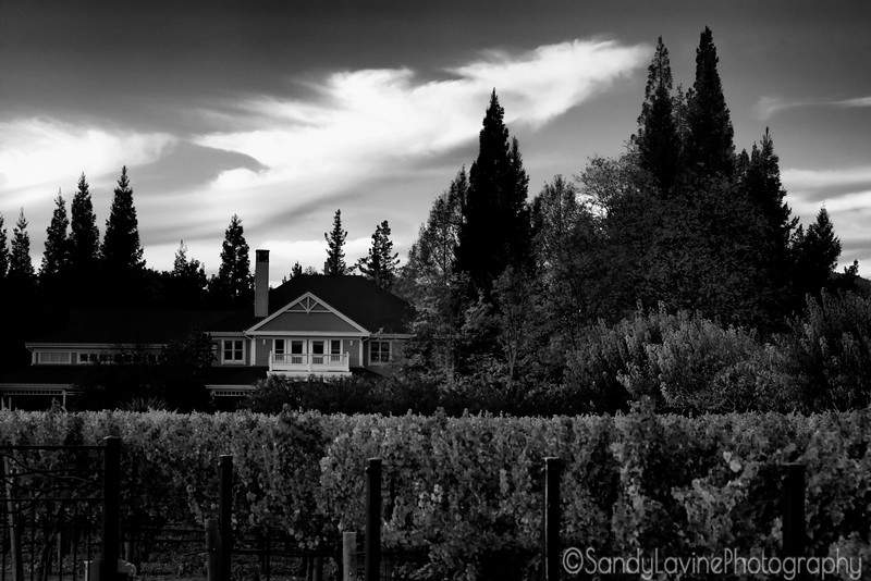 Duckhorn Winery Late Fall 2015