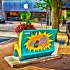 Chair Art - Anderson's Bookshops - Naperville, Illinois - Photo Taken: August 26, 2017
