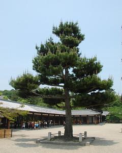 Inside Horyuji Temple